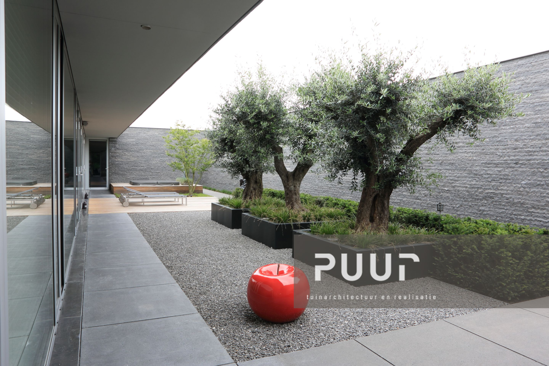 Strakke tuin met aluminium bakken puur groenprojecten