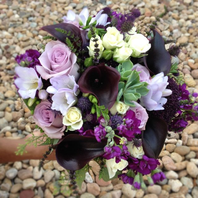 Succulent, dark purple cala lily, lavender roses, freesia, bridal bouquet.