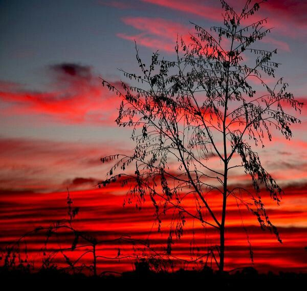 Victoria, Australia. .sun set ,pretty
