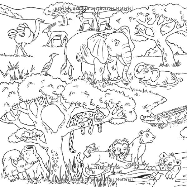 Mein Wimmelmalbuch Tiere: Amazon.de: Helge Glatzel-Poch: Bücher ...