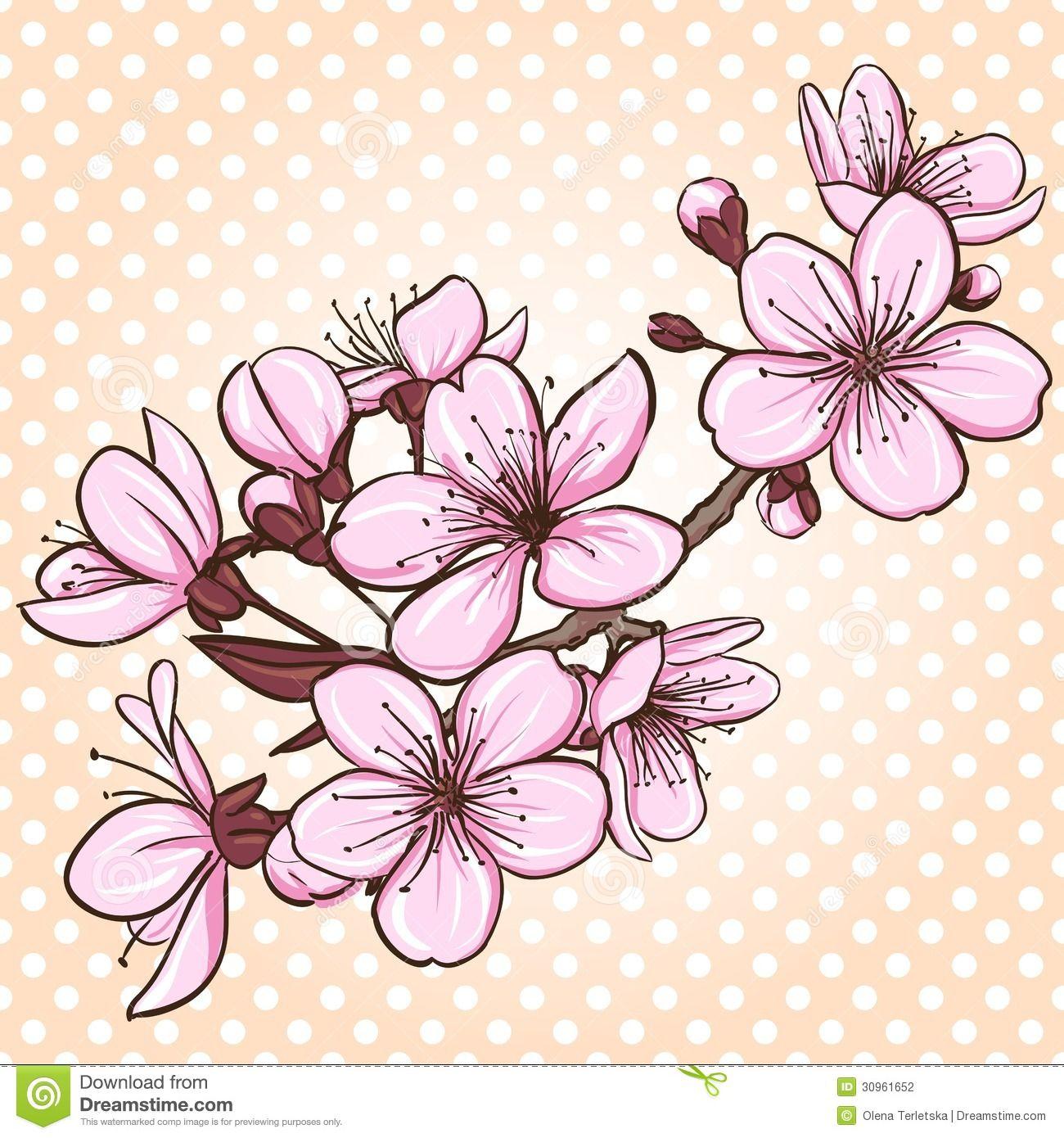 Flor De Cerezo 30961652 Jpg 1300 1390 Cherry Blossom Drawing Flower Drawing Cherry Blossom Vector