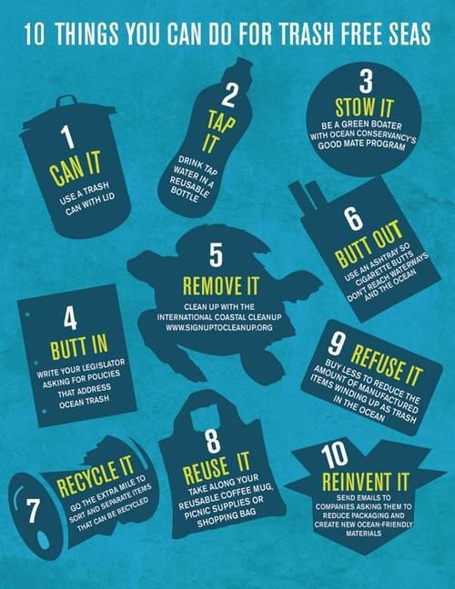 10 things you can do for the sea