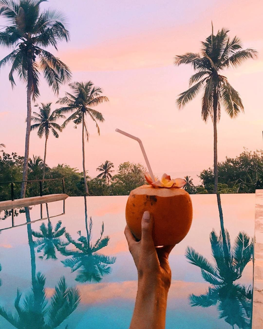 sunsets & coconuts are always a good idea
