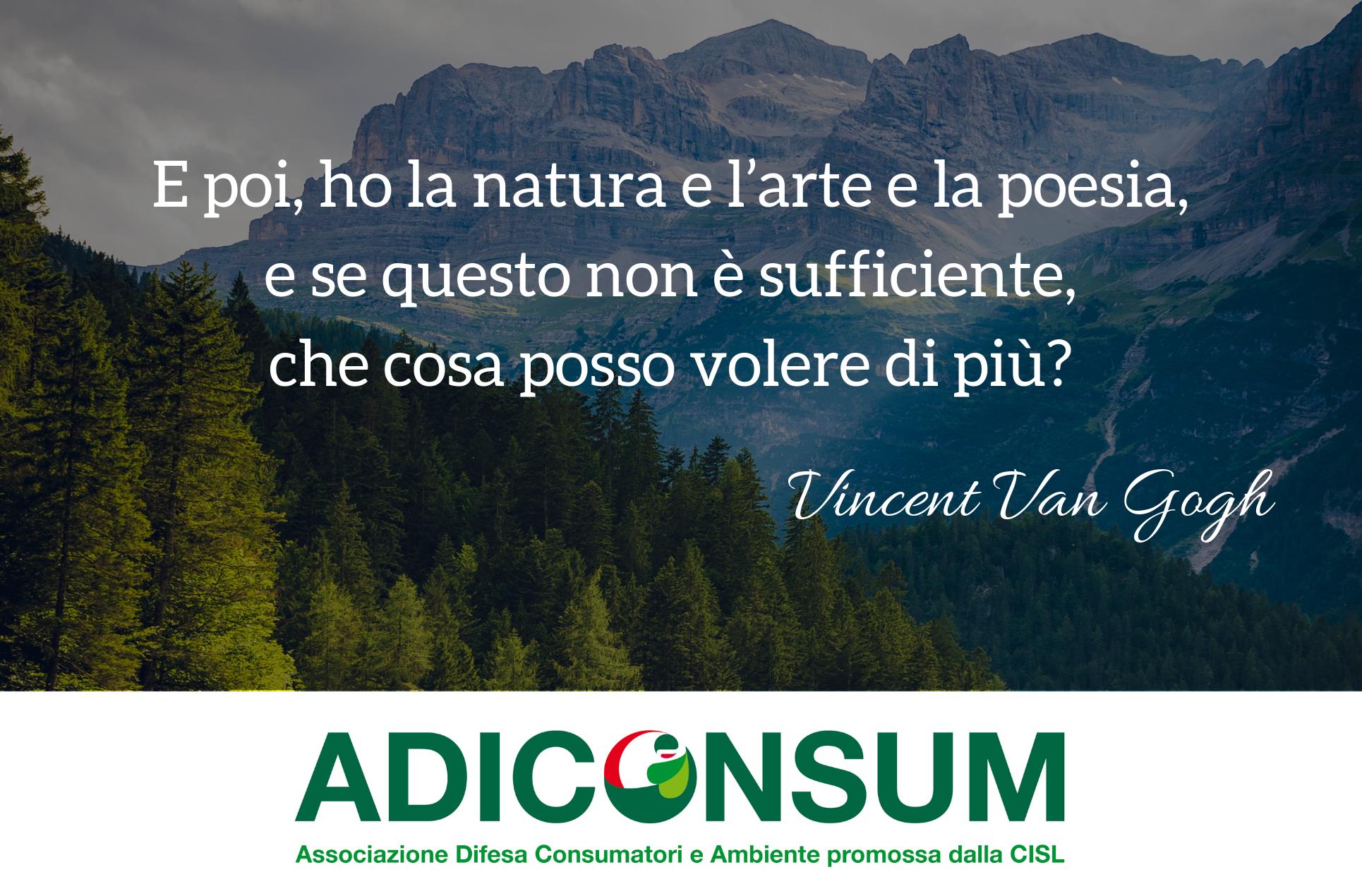 Adiconsum è L Unica Associazione Dei Consumatori Che Nella