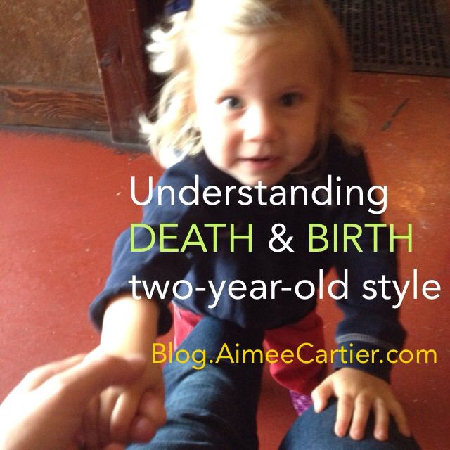 #Funny conversations with a 2-year-old about #death and #birth.  OR, Understanding Death and Birth two-year-old style Aimee Cartier Blog