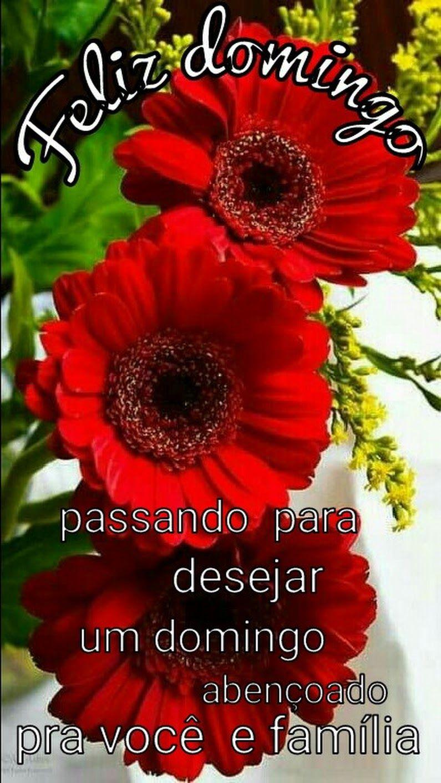 Bom Dia Comunidade Marly Gomes Dos Santos Google Dias