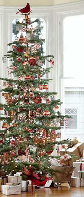Inspiration lane O\u0027 Christmas Tree Pinterest Inspiration