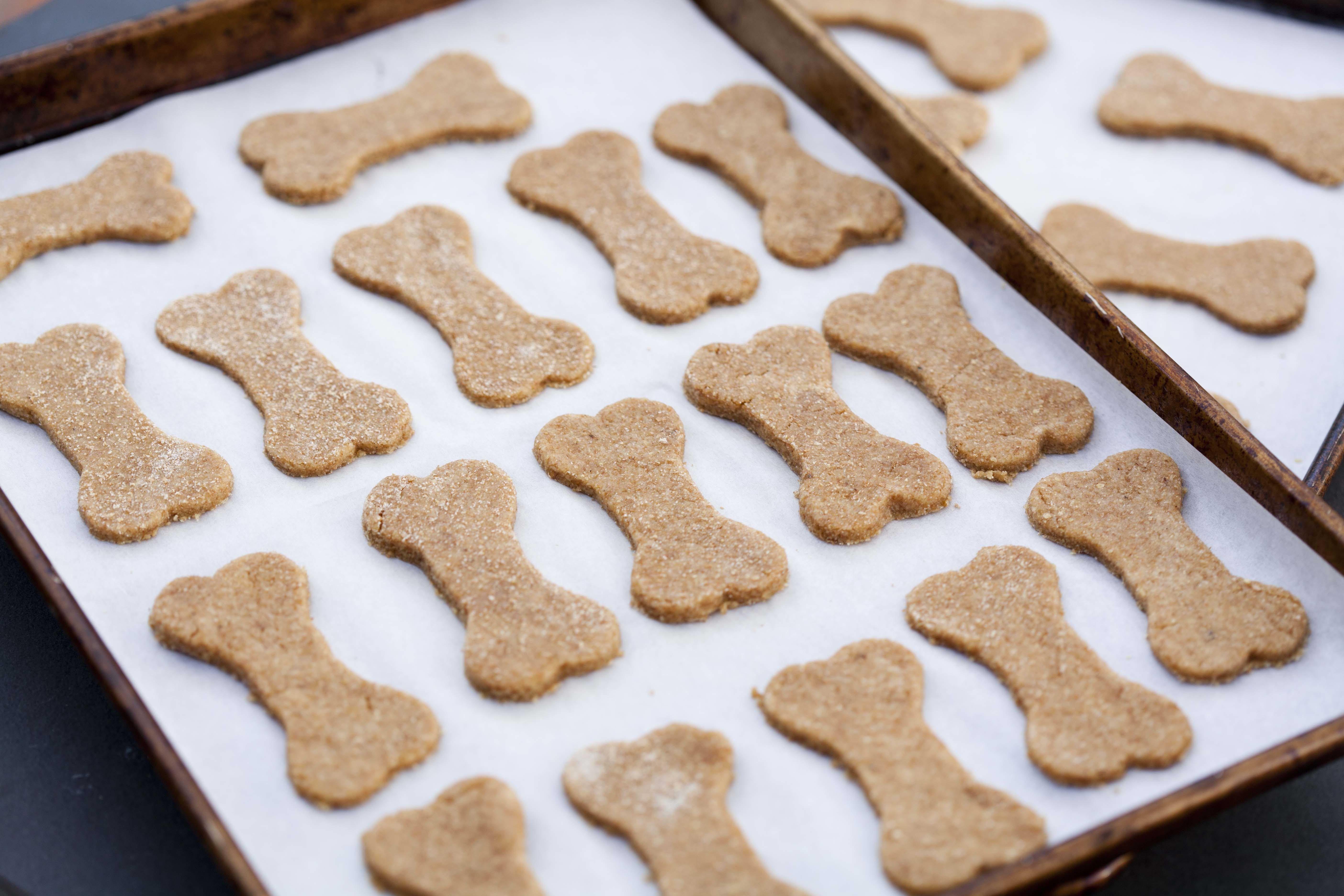 Homemade Doggie Treats Recipe Dog Biscuit Recipes Homemade