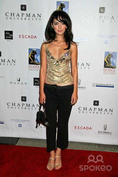 nazanin boniadi how i met your mother