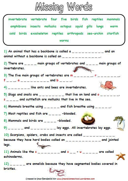 Animal Classification Activity Worksheets | Homeschool ...