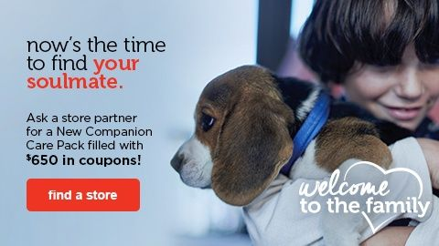 New Pet Ask A Store Partner For A New Companion Care Pack Filled With 650 In Coupons Find A Store With Images Companion Care Care Pack Pets