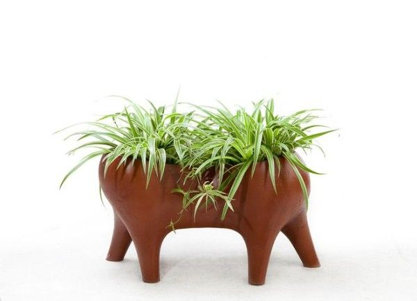 Captivate With The Animal Farm Planter By Hive - http://www.interiorredesignseminar.com/interior-design-articles/captivate-with-the-animal-farm-planter-by-hive/