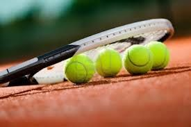 I love to play tennis. I play tennis every week at our local tennis club - only on gravel because of my knees.