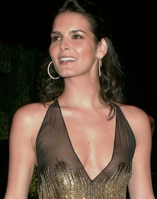 angie-harmon-nude-faux