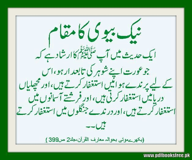 Hazrat Ali Quotes About Husband And Wife  Quotes Of The Day-9742