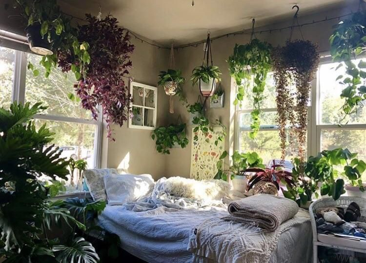 My Jungle Bedroom Kennesaw Georgia Amateurroomporn Bedroom Design Aesthetic Bedroom Jungle Bedroom