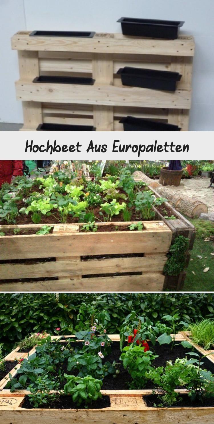 Hochbeet Aus Europaletten Hochbeet Selber Bauen Aus Paletten Inspirationen Ratgeber Tipps Zum Bau Diy Ideen Palettenmobel Garten Mobel In 2020 Plants