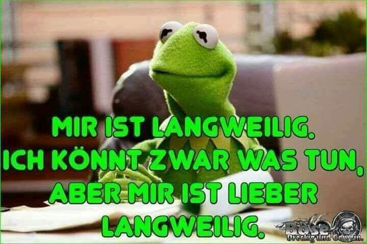 Pin Von Sonja Lehn Auf Mupets Witzige Bilder Spruche Lustige Spruche Bilder Witzige Spruche