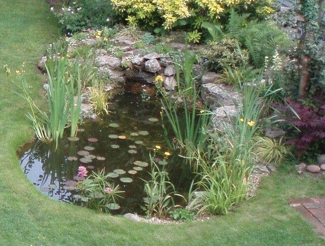 Splash out on a pond | Rockery stones, Pond, Garden ...