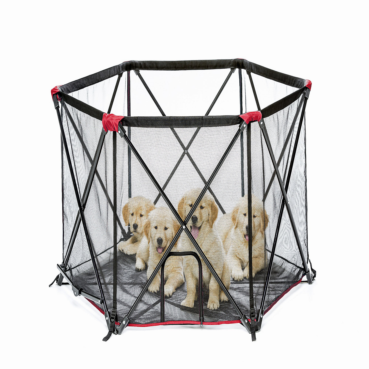 Carlson pet products red six panel pet pen 48 l x 48 w