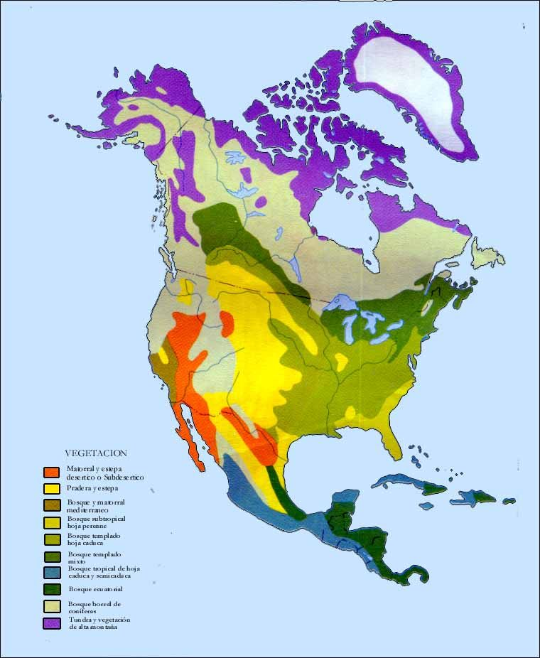 Vegetation Map for North America | Maps | Physical geography ...