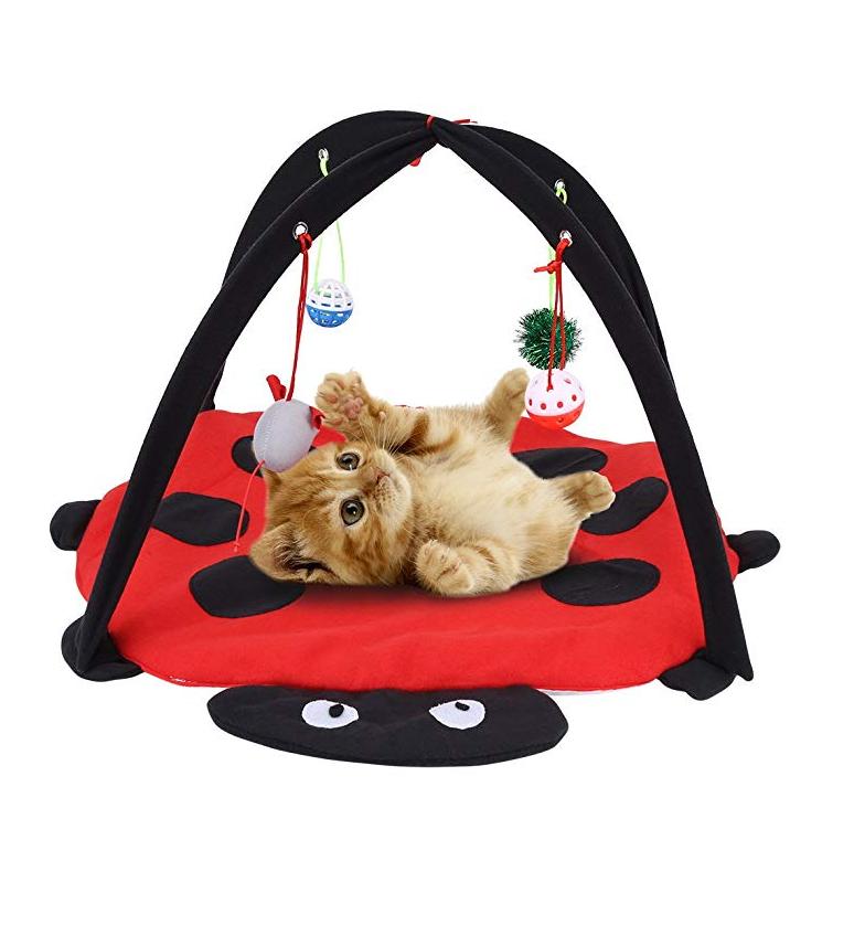 tapis d eveil pour chat lit pour chat