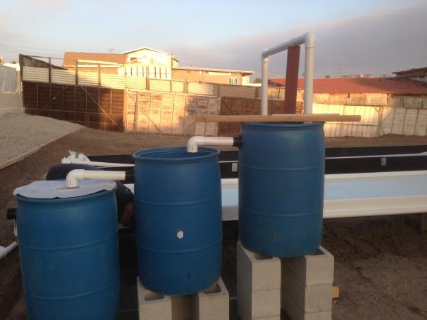 filtros aquaponia