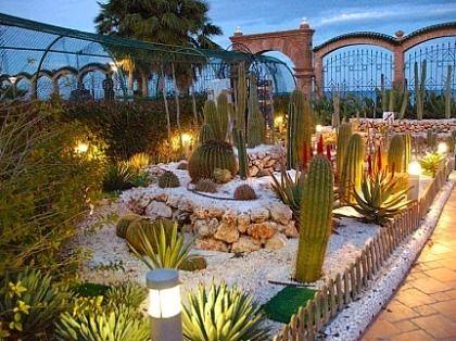 jardn cactus variedad alumbrado