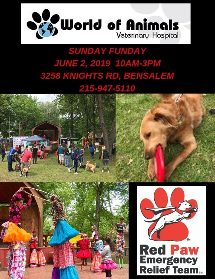 This Sunday June 2nd World Of Animals 5th Annual Sunday Funday Fundraiser To Benefit Red Paw Emergency Relie With Images Puppy Kisses Veterinary Hospital Dogs And Puppies