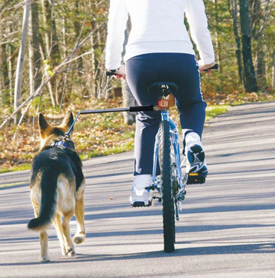 Petego hands feee bicycle leash. Amazon.ca Want!! Dog
