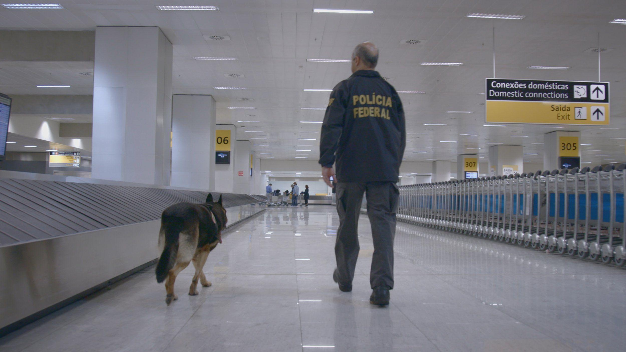 Aeroporto Gru : Notícias ao minuto brasil aeroporto de guarulhos é considerado o