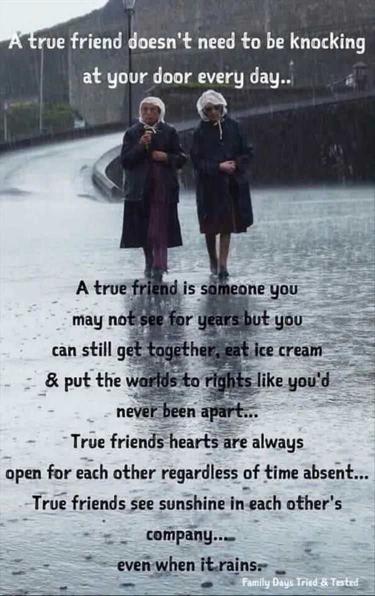 Quotes Of The Day 13 Pics Friendship Day Quotes True Friends Friends Quotes