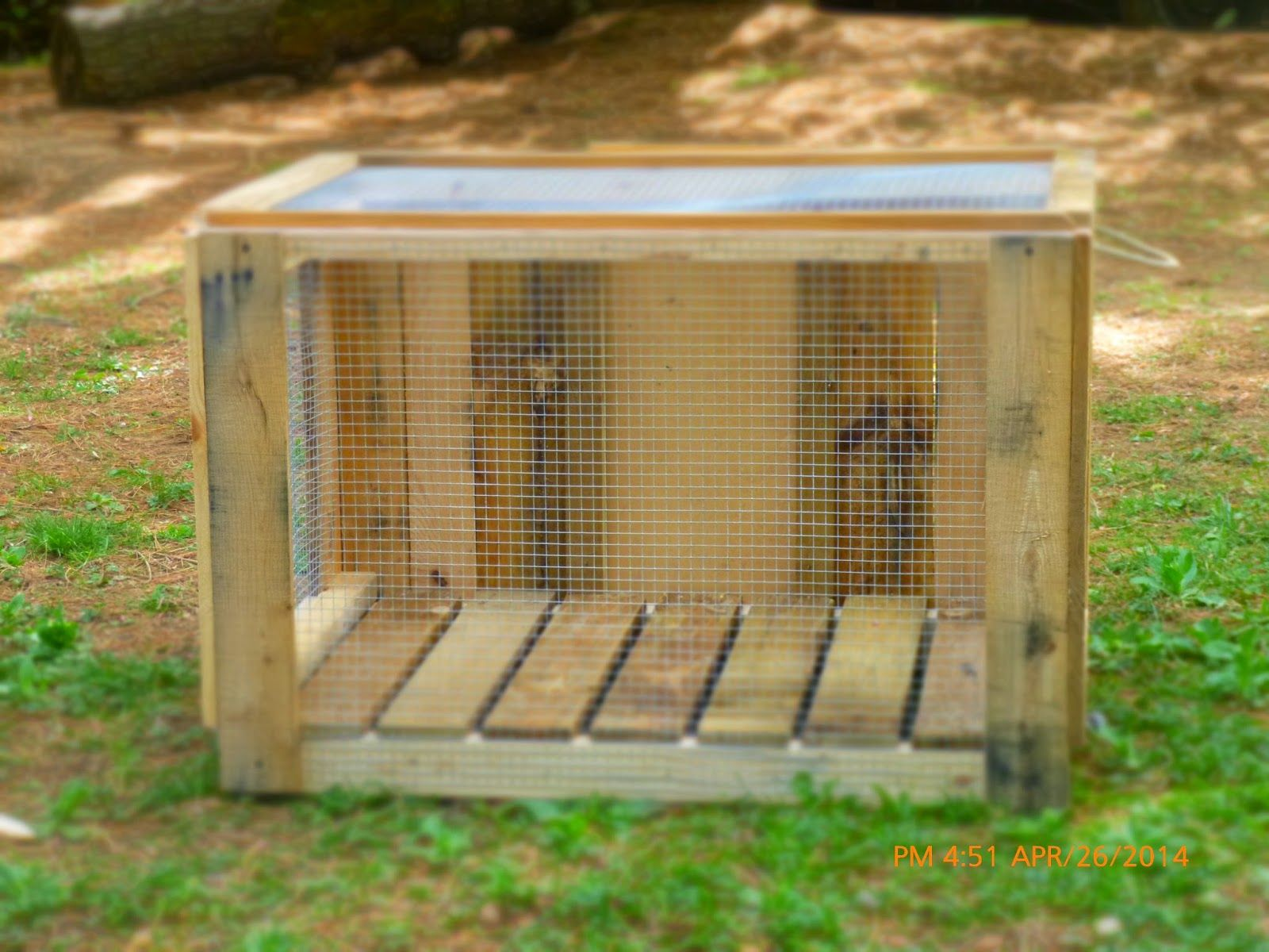 Gamefowl Pens Cages - Year of Clean Water