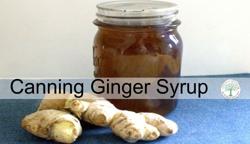 Make a batch of this ginger syrup and can it up for long term storage. Have it on hand for homemade ginger ale, upset tummies and more!