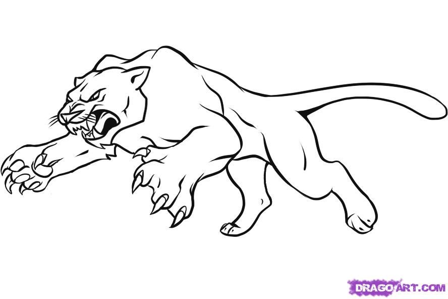 How to Draw a Panther, Step by Step, Rainforest animals