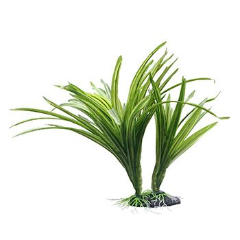 Pet Supplies Pet Products Pet Food Petco Com Plants Artificial Aquarium Plants Acorus