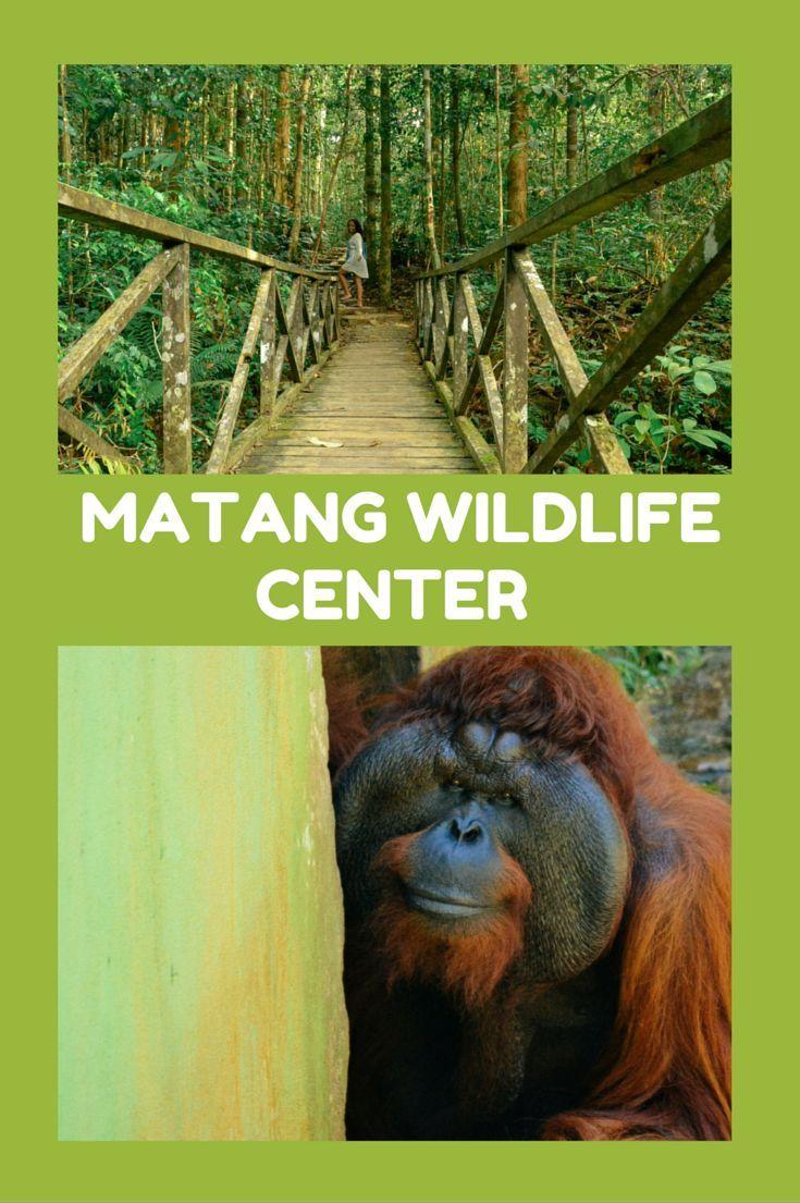 Amazing Sarawak Matang Wildlife Center Wildlife Travel Southeast Asia Travel Asia Travel