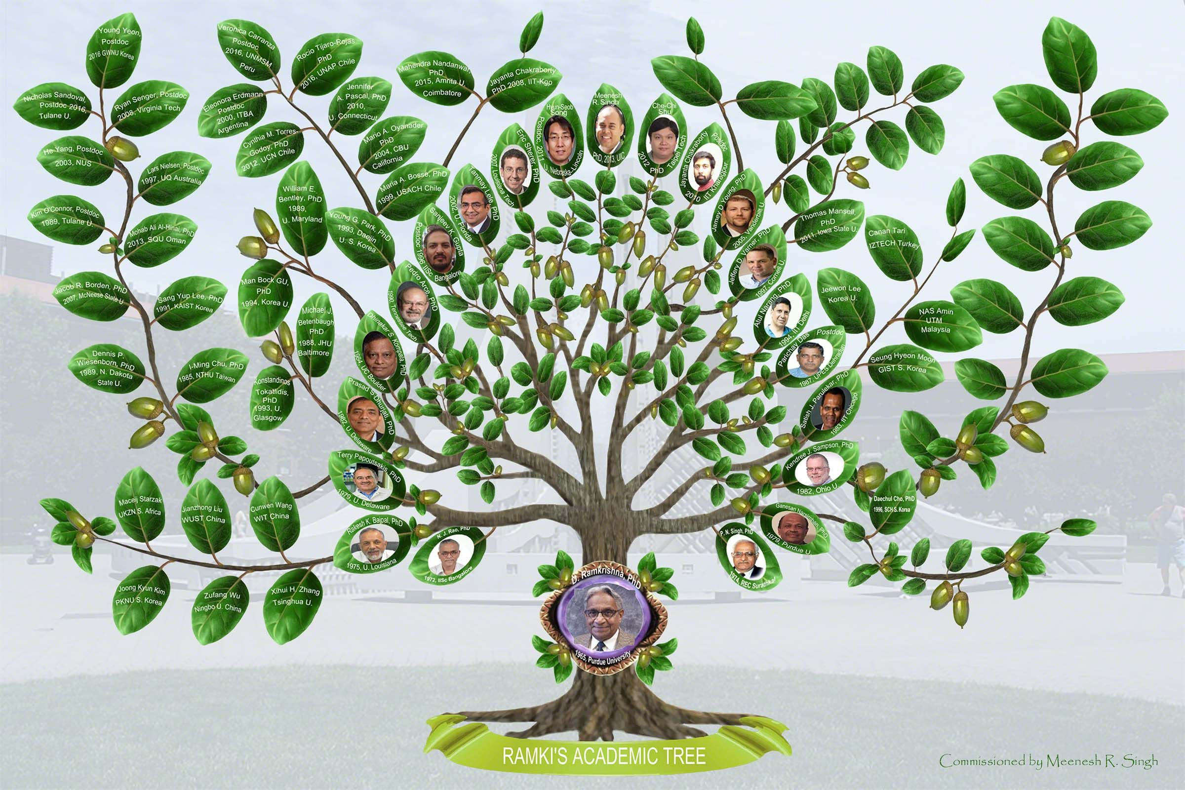 this is an example of a custom made academic tree made for an