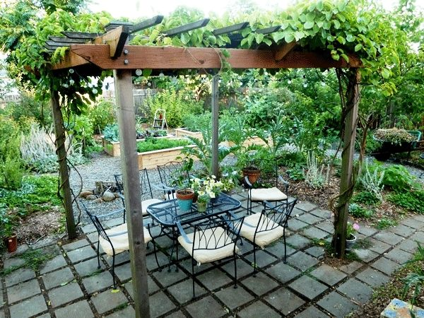 21 Best Patio Grape Arbor Decor Ideas Outdoor Pergola