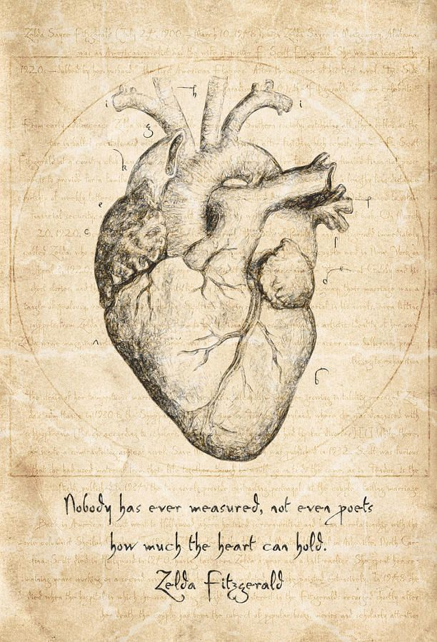 Zelda Fitzgerald Drawing Heart Quote By Zelda Fitzgerald By Taylan