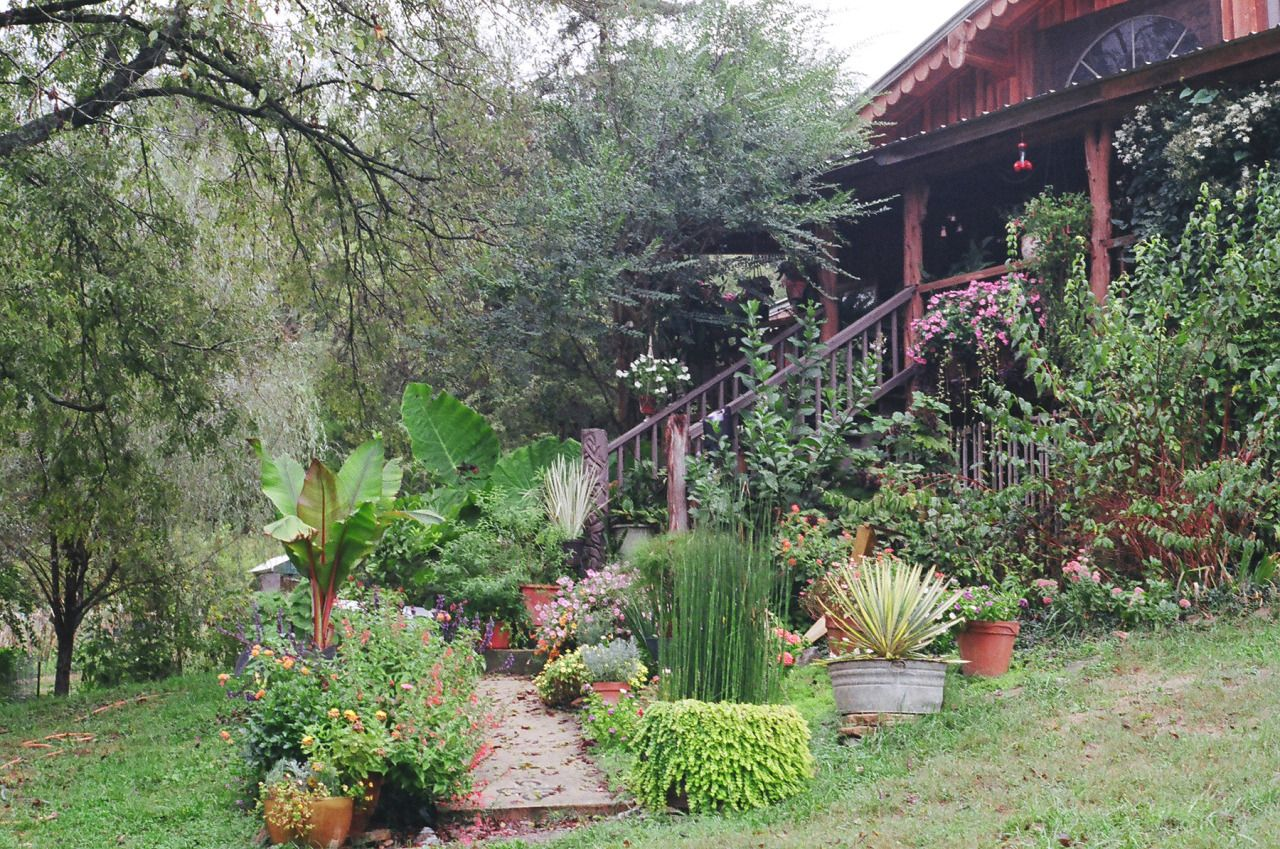 Ambient Mixer ambient-mixer | home, garden, beautiful gardens, garden