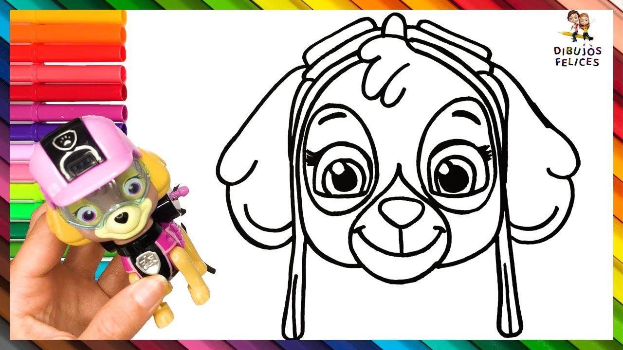 Como Dibujar Y Colorear A Skye De La Patrulla Canina Paw Patrol Di Dibujos De Colores Dibujos Para Ninos Patrulla Canina