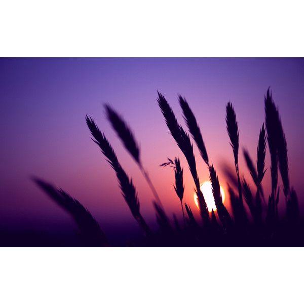 темно-фиолетовый цвет в одежде палитра фиолетового цвета #yandeximages ❤ liked on Polyvore featuring backgrounds