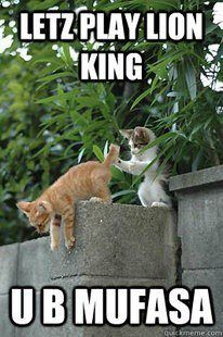 Letz Play Lion King Funny Animal Pictures Funny Animals Funny Cat Memes
