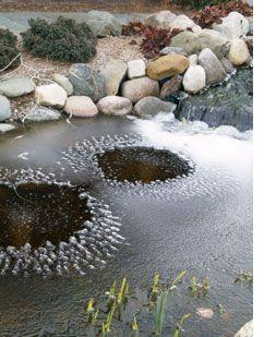 Pond Heater vs Pond Aerator   Pond aerator, Pond heater ...