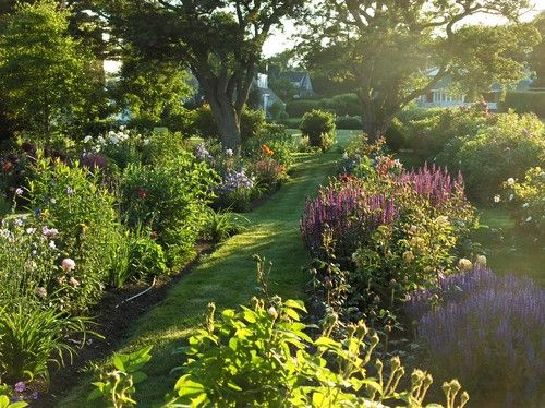 Perennial garden in late afternoon - contemporary - landscape - portland  maine - Ann Kearsley Design - Perennial Garden In Late Afternoon - Contemporary - Landscape
