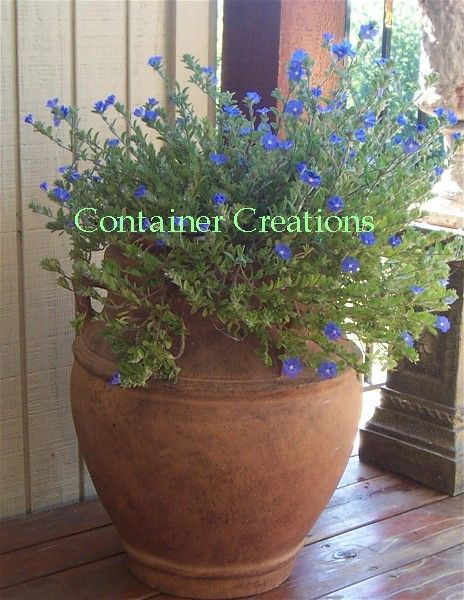 Container Creations Combination