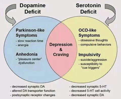 Dopamine vs serotonin | Nurse call light! | Mental health