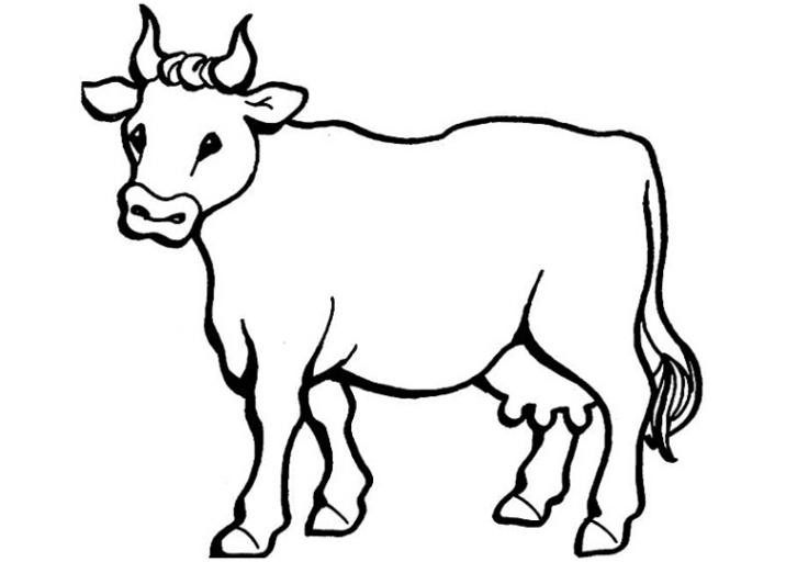 Malvorlagen Fur Kuh Kuh Malvorlagen Kostenlos Zum Ausdrucken Ausmalbilder Kuh 2009995 Ideen