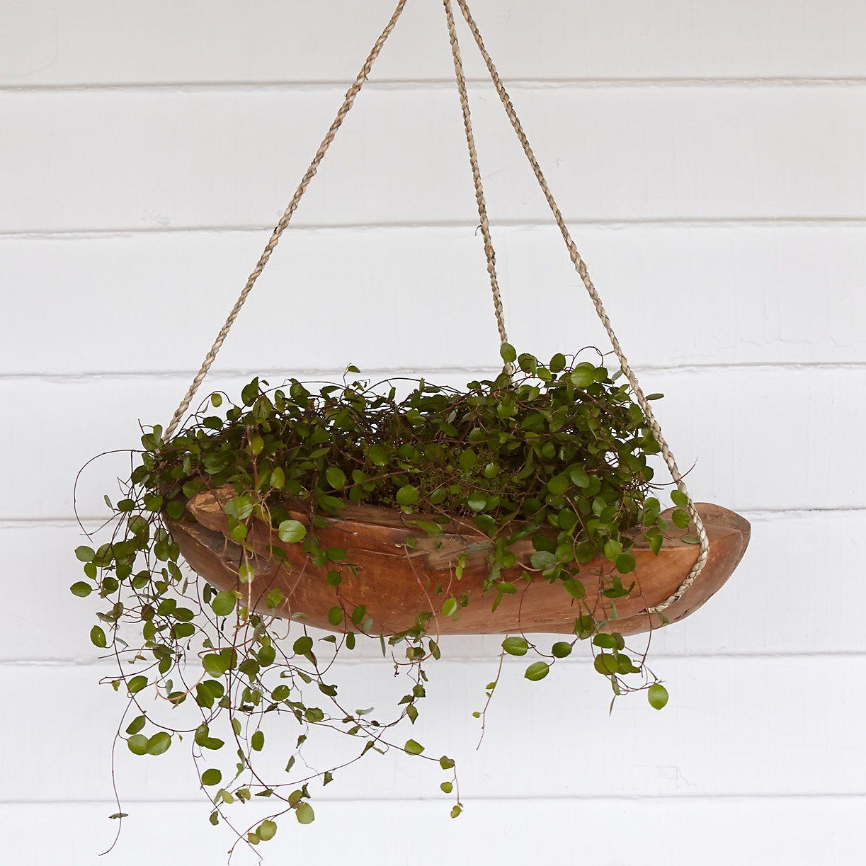 Uncategorized Hanging Planters Outdoor teak hanging planter 16 planters and garden basket in baskets at terrain